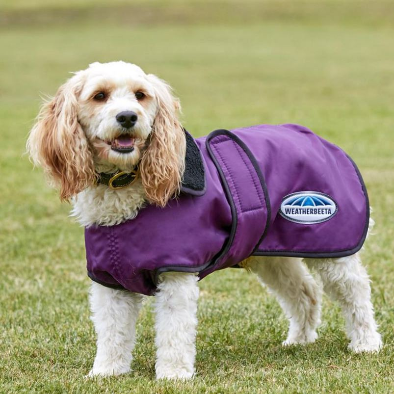 Now stocking Weatherbeeta Dog Coats