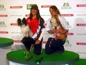 Agility Success at Crufts 2014 for Amy and Fudge