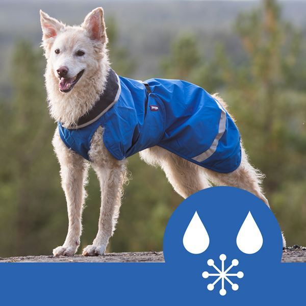 Why do we love the Pomppa dog coat range so much here at Agility World HQ?