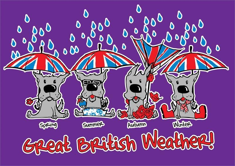 Great British Weather T-Shirt
