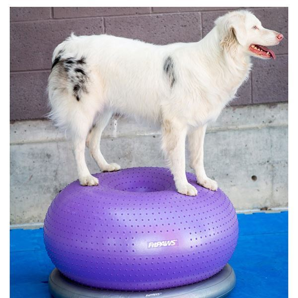 FitPAWS® TRAX™ Donut
