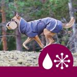 Last Season's colours Pomppa Perus medium weight Dog Coat