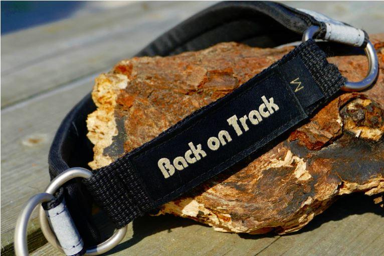 Back On Track Dog Collar Agility World